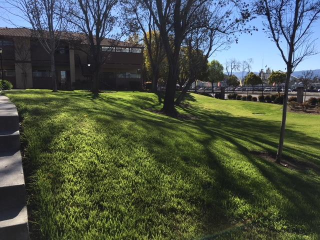 427 Kenbrook Cir, San Jose, CA 95111 (#ML81693394) :: The Kulda Real Estate Group