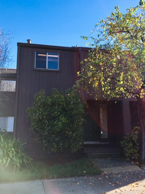 104 Tree Frog Ln, Santa Cruz, CA 95060 (#ML81737533) :: The Gilmartin Group