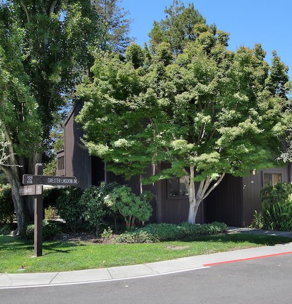 105 Shelter Lagoon Dr, Santa Cruz, CA 95060 (#ML81764352) :: Strock Real Estate