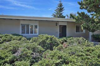 298 Hacienda Carmel - Photo 1