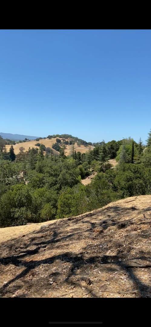 12874 Viscaino Rd, Los Altos Hills, CA 94022 (#ML81804274) :: The Realty Society