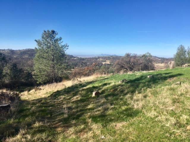 12286 Honey Mushroom Ln, SMARTSVILLE, CA 95977 (#ML81828740) :: The Goss Real Estate Group, Keller Williams Bay Area Estates