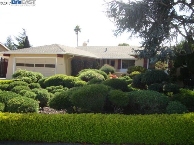 35110 Rugby Pl, Newark, CA 94560 (#BE40859156) :: The Kulda Real Estate Group