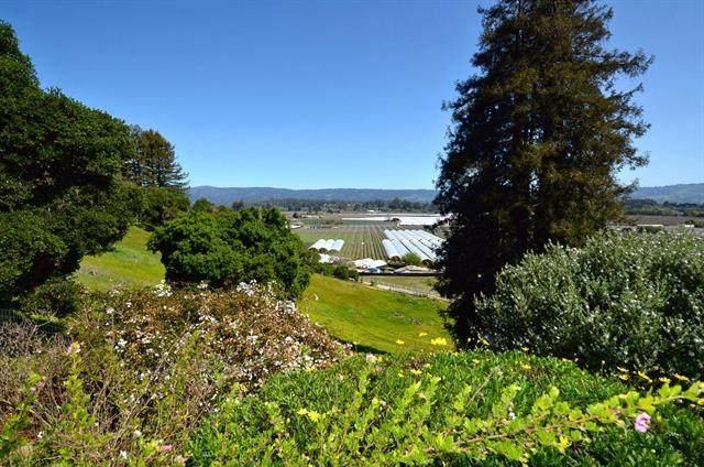 134 Johnsen Lane, Watsonville, CA 95076 (#ML81805079) :: The Realty Society