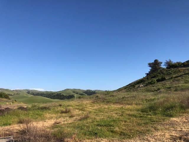 489 Vista Ridge Dr, Milpitas, CA 95035 (#ML81840202) :: Robert Balina | Synergize Realty