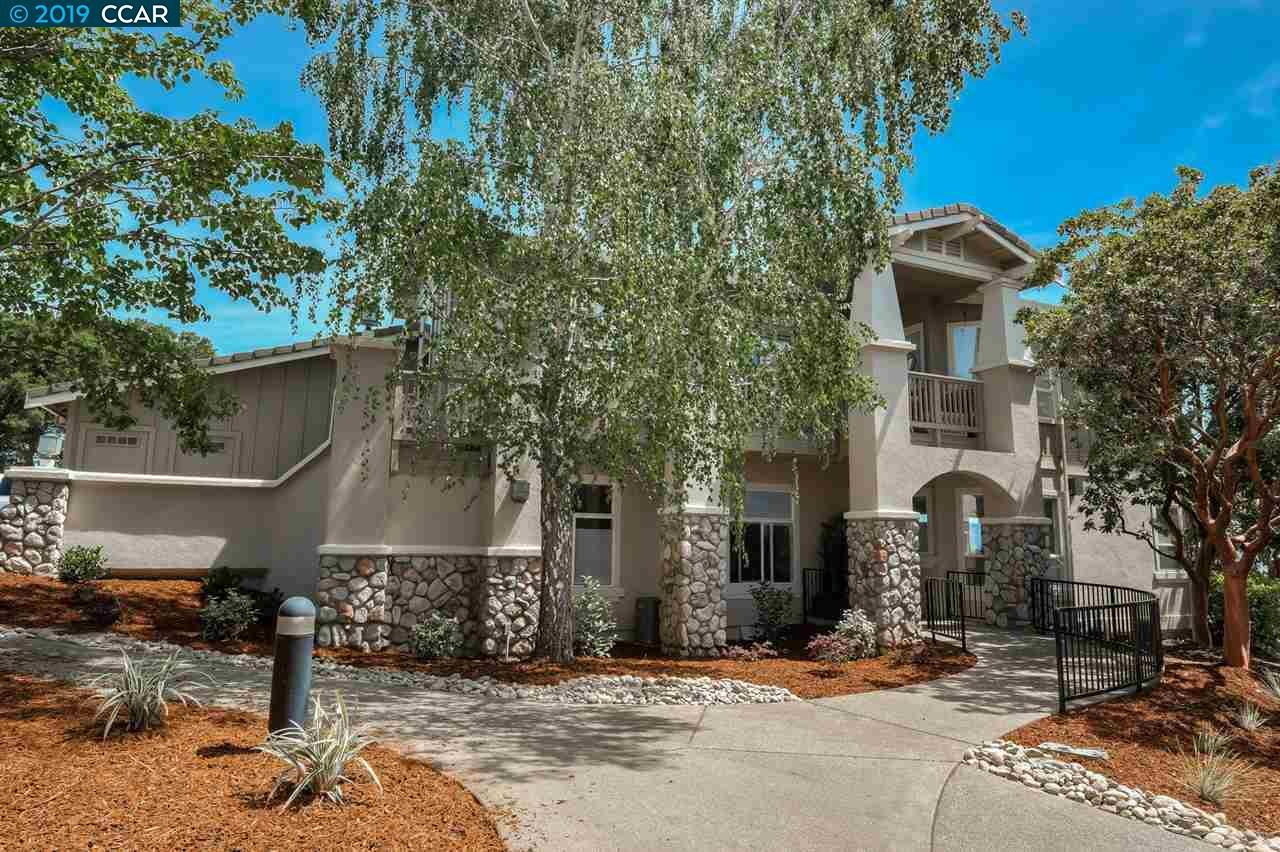 517 Spotted Owl Ct - Photo 1