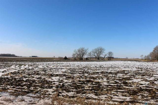 475th Ave, Harrisburg, SD 57032 (MLS #20200170) :: Tyler Goff Group
