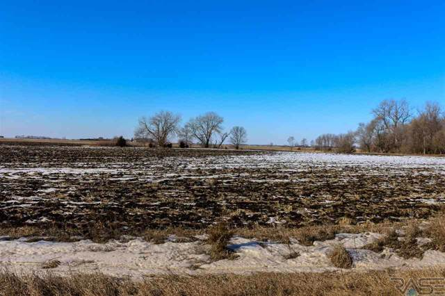 475th Ave, Harrisburg, SD 57032 (MLS #20200171) :: Tyler Goff Group