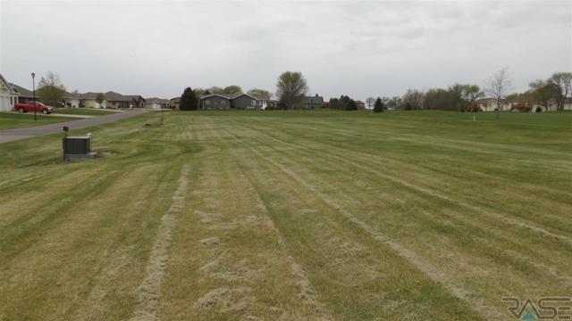 0 Golf 7 Dr, Wentworth, SD 57075 (MLS #21702662) :: Tyler Goff Group