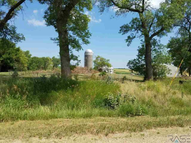 23894 467th Ave, Colman, SD 57017 (MLS #21704405) :: Tyler Goff Group