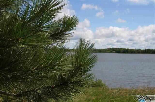 4 Margi Park, Waubay, SD 57273 (MLS #21801029) :: Tyler Goff Group
