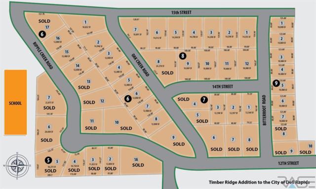 1401 Oak Creek Rd, Dell Rapids, SD 57022 (MLS #21802860) :: Tyler Goff Group