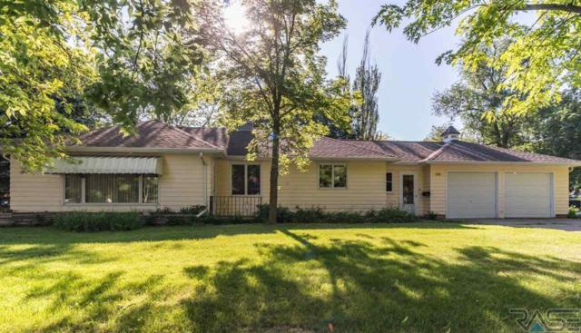 290 N Elm Ave, Parker, SD 57053 (MLS #21803170) :: Tyler Goff Group