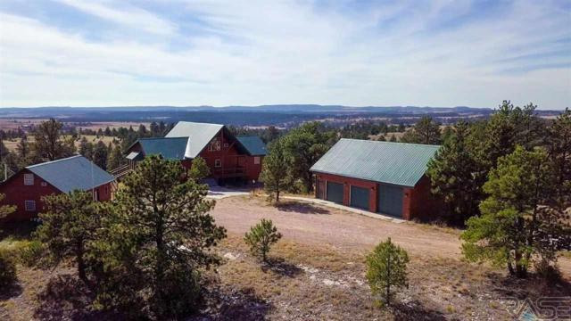 11431 Wrangler Rd, Custer, SD 57730 (MLS #21806266) :: Tyler Goff Group