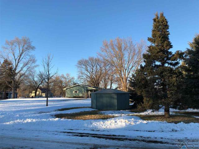 409 Haines St, Dante, SD 57329 (MLS #21807445) :: Tyler Goff Group