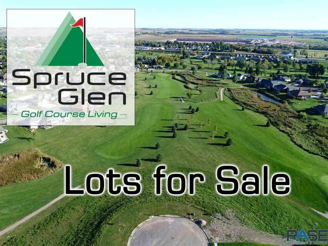 10 Tee Off Trl, Dell Rapids, SD 57022 (MLS #22001614) :: Tyler Goff Group