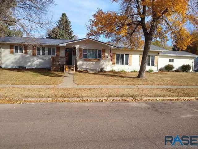 300 E Lightner Ave, Salem, SD 57058 (MLS #22006442) :: Tyler Goff Group