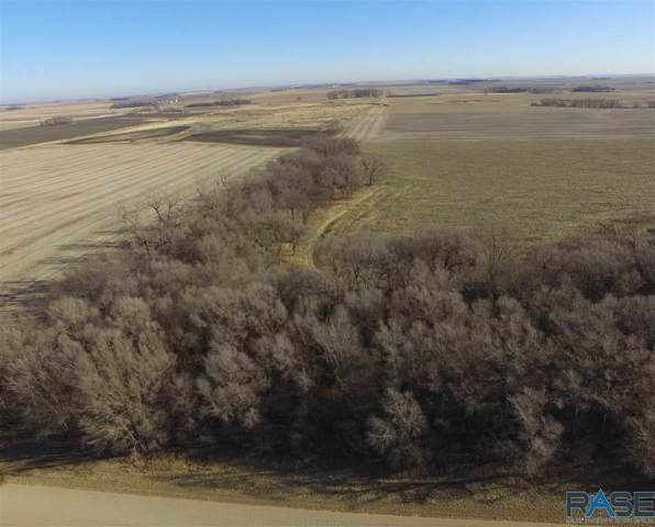 Tbd 484th Ave, Dell Rapids, SD 57022 (MLS #22007373) :: Tyler Goff Group
