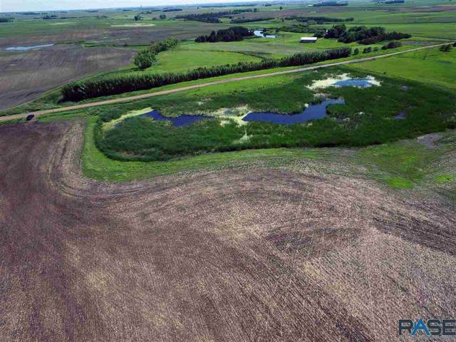 266th St, Humboldt, SD 57035 (MLS #22100813) :: Tyler Goff Group