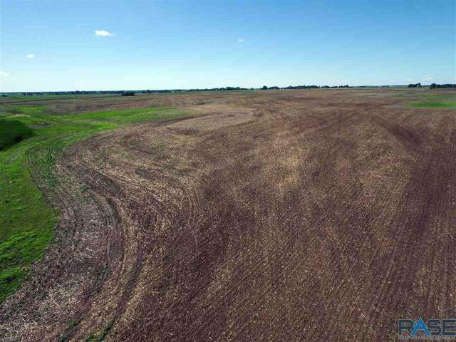 266th St, Humboldt, SD 57035 (MLS #22100815) :: Tyler Goff Group