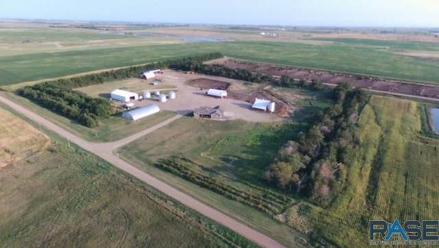 38425 275th St, Corsica, SD 57328 (MLS #22102391) :: Tyler Goff Group