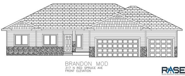 317 N Red Spruce St, Sioux Falls, SD 57110 (MLS #20200046) :: Tyler Goff Group