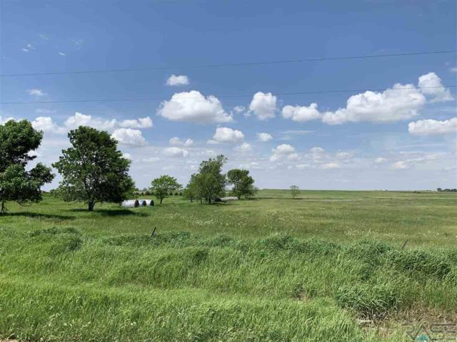 27051 464th Ave, Tea, SD 57015 (MLS #21903504) :: Tyler Goff Group