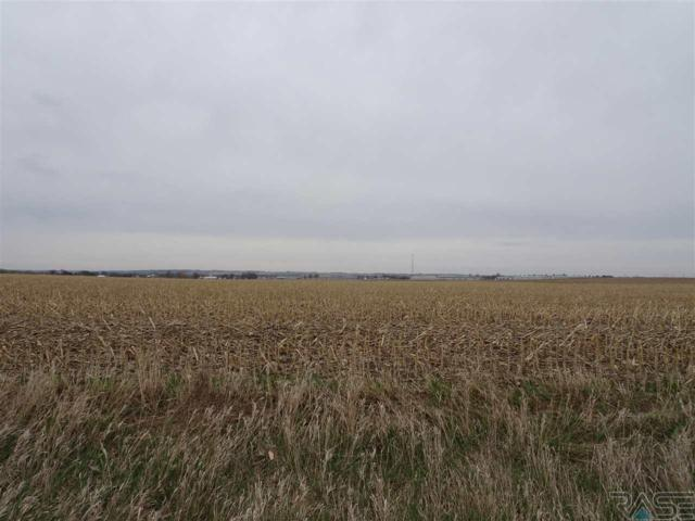 #3 TBD, Canton, SD 57013 (MLS #21707578) :: Tyler Goff Group
