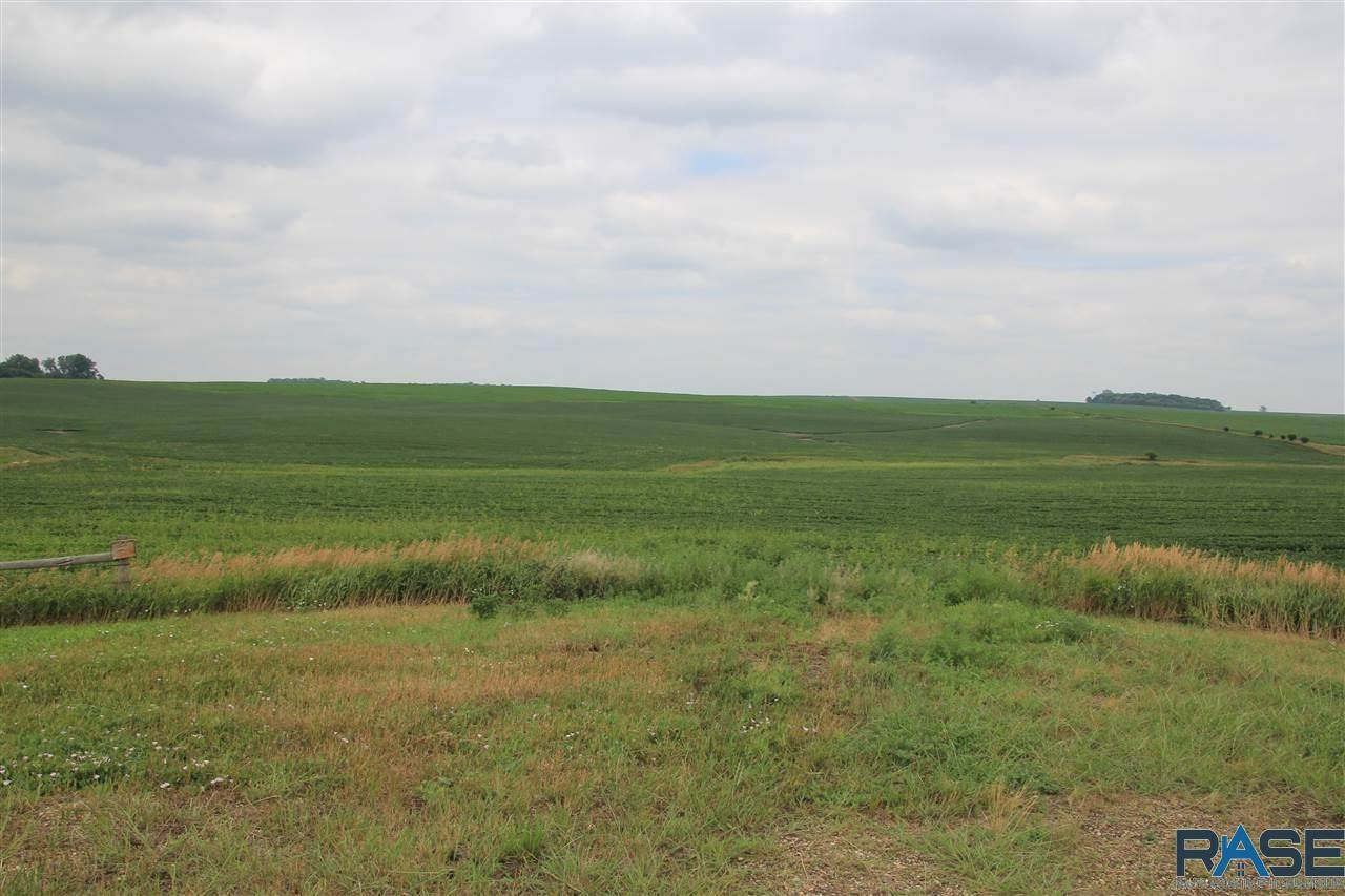 Tbd On Hwy 19 (455Th Ave) Ave - Photo 1