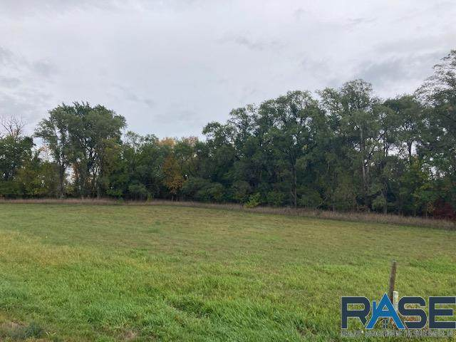 Tbd Hwy 42 & 449th Ave, Monroe, SD 57047 (MLS #22105968) :: Tyler Goff Group