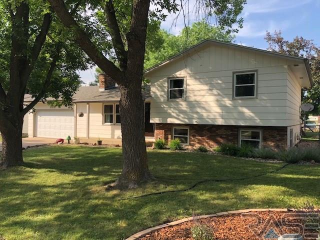 208 E Lotta St, Sioux Falls, SD 57105 (MLS #21803507) :: Tyler Goff Group
