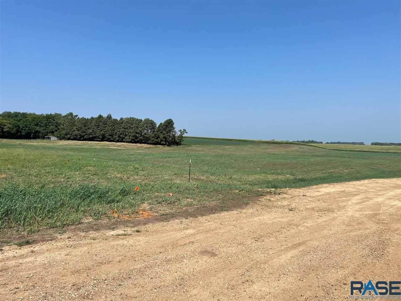 Pheasant Run Ave - Photo 1