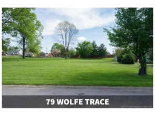 79 Wolfe Trace, New Albany, IN 47150 (MLS #201706118) :: The Paxton Group at Keller Williams