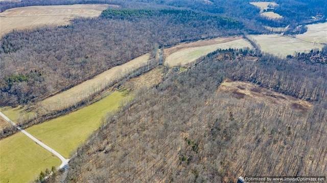 3061 S Bogard Hollow Road, English, IN 47118 (MLS #2020010297) :: The Paxton Group at Keller Williams Realty Consultants