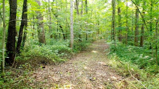 New Cut Road, Palmyra, IN 47164 (#202109445) :: The Stiller Group