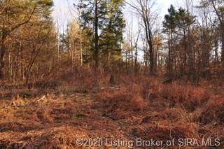 Otterbein Road SE, Laconia, IN 47135 (#202005976) :: The Stiller Group