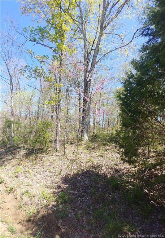 6008 Forest Brook Road, Lanesville, IN 47136 (#202007246) :: The Stiller Group