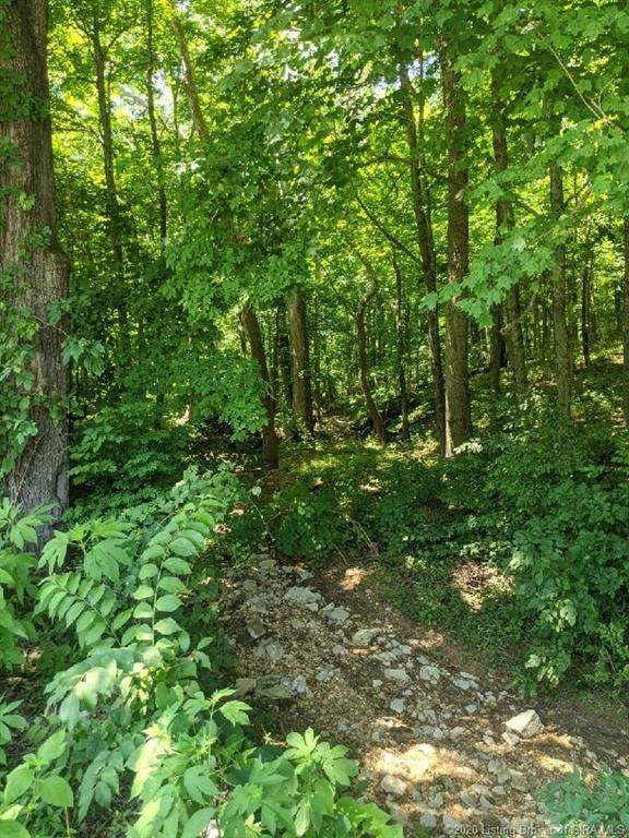 N Side White River Road, Campbellsburg, IN 47108 (MLS #202009026) :: The Paxton Group at Keller Williams Realty Consultants