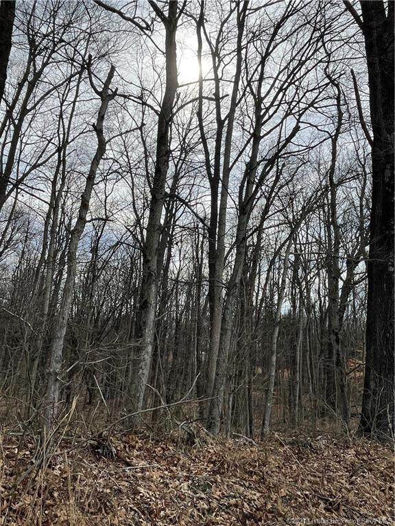 Tobacco Landing Road, Laconia, IN 47135 (MLS #202106177) :: The Paxton Group at Keller Williams Realty Consultants