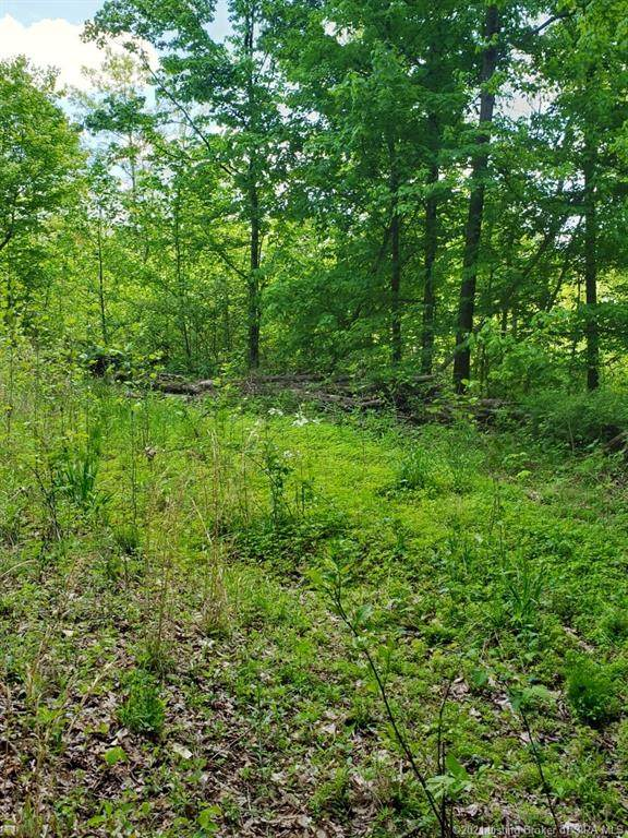 N State Road 37, Paoli, IN 47454 (MLS #202108069) :: The Paxton Group at Keller Williams Realty Consultants