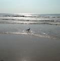 706 Beach - Photo 24