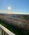4800 Harbor Beach - Photo 21