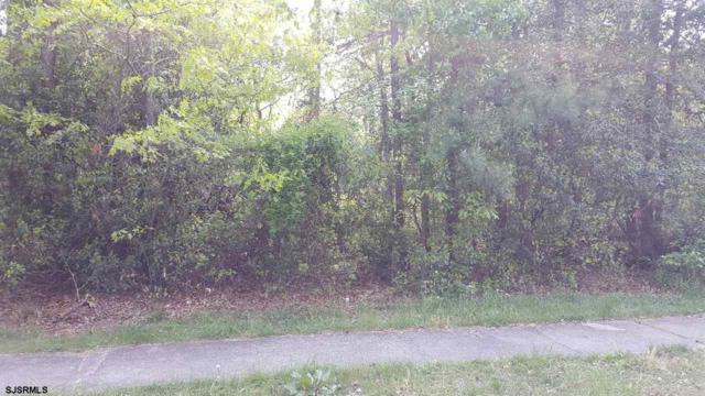 419 & 421 Harding Lane, Corbin City, NJ 08270 (MLS #505189) :: The Ferzoco Group