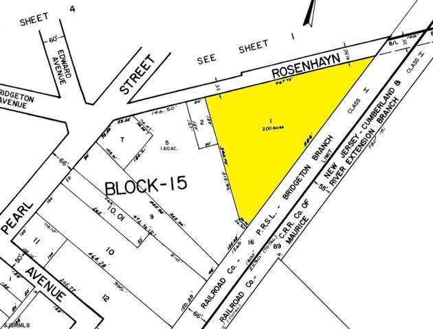 0 Rosenhayn, Bridgeton, NJ 08302 (MLS #512129) :: The Ferzoco Group