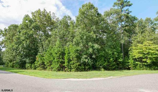 31 Brewers Lane, Dennis Township, NJ 08214 (MLS #541653) :: Provident Legacy Real Estate Services, LLC