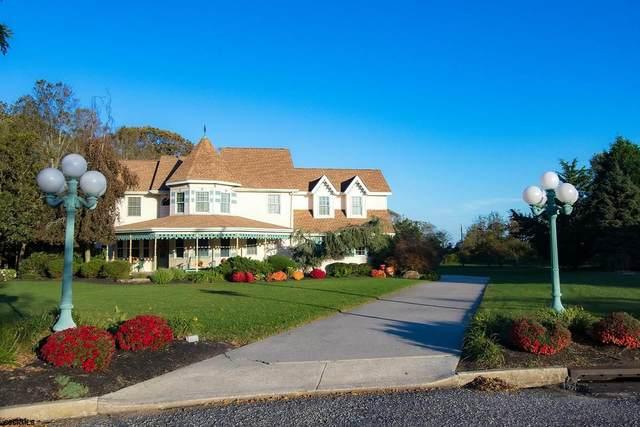 17 Harrys, Palermo, NJ 08230 (MLS #547992) :: Provident Legacy Real Estate Services, LLC