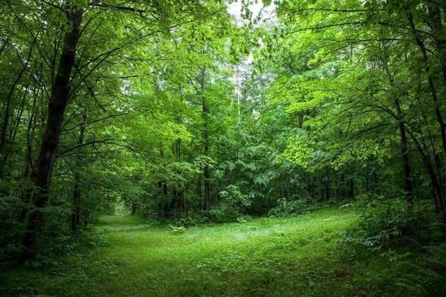 40 Butter Road, Upper Township, NJ 08230 (MLS #550388) :: Gary Simmens