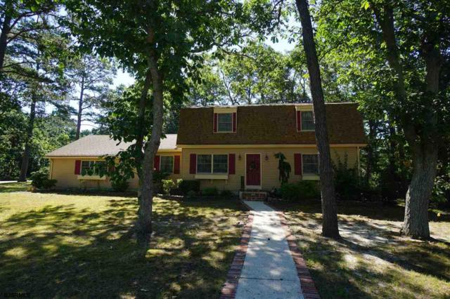 1227 Robin, Millville, NJ 08332 (MLS #502413) :: The Ferzoco Group
