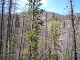 TBD Spring Creek Road - Photo 7