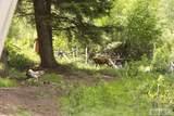 29 Mule Deer Trail - Photo 18